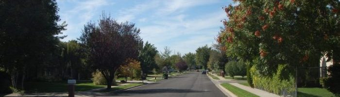 Photo of a tree lined street in a neighborhood